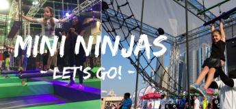 Ninja Academy: Mini Ninjas
