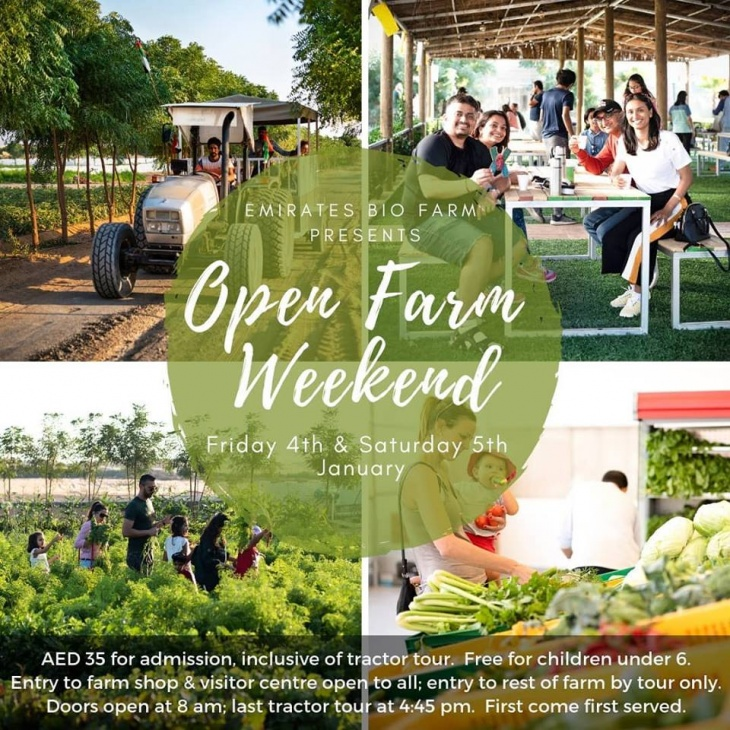 Open Farm Days @ Emirates Bio Farm