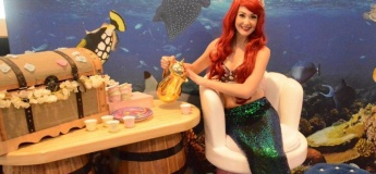 The Little Mermaid Tea Party @ The Toy Store