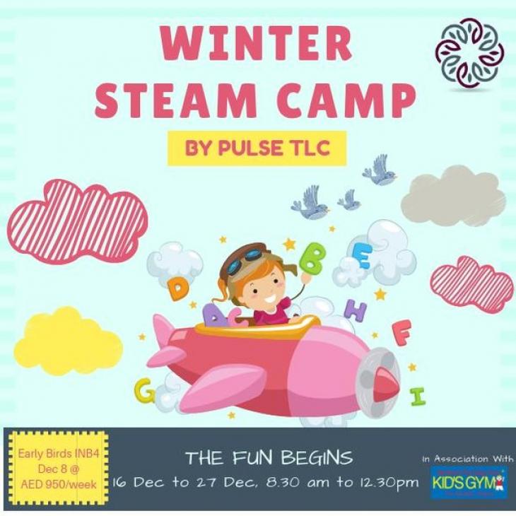 Winter STEAM Camp by Pulse TLC