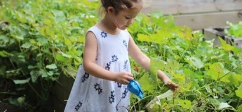 The Children's Garden