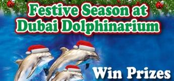 Festive Season at Dubai Dolphinarium