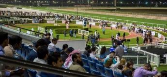 Racing at Meydan - Picnic at The Premium
