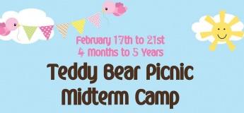 Teddy Bear Picnic Midterm Camp @ StepUp Nursery