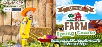 Ladybird Farm Spring Course