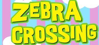 Zebra Crossing - Dubai